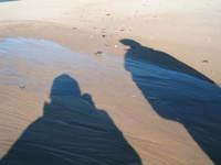 Beach_shadows