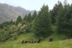 Fellowship_on_hike