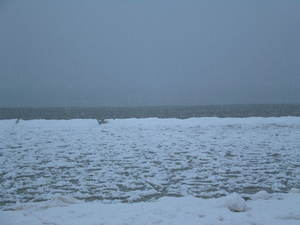 Lake_michigan_ice